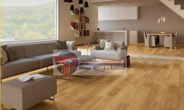 Hướng dẫn cách lắp đặt sàn gỗ công nghiệp trong môi trường có mối mọt